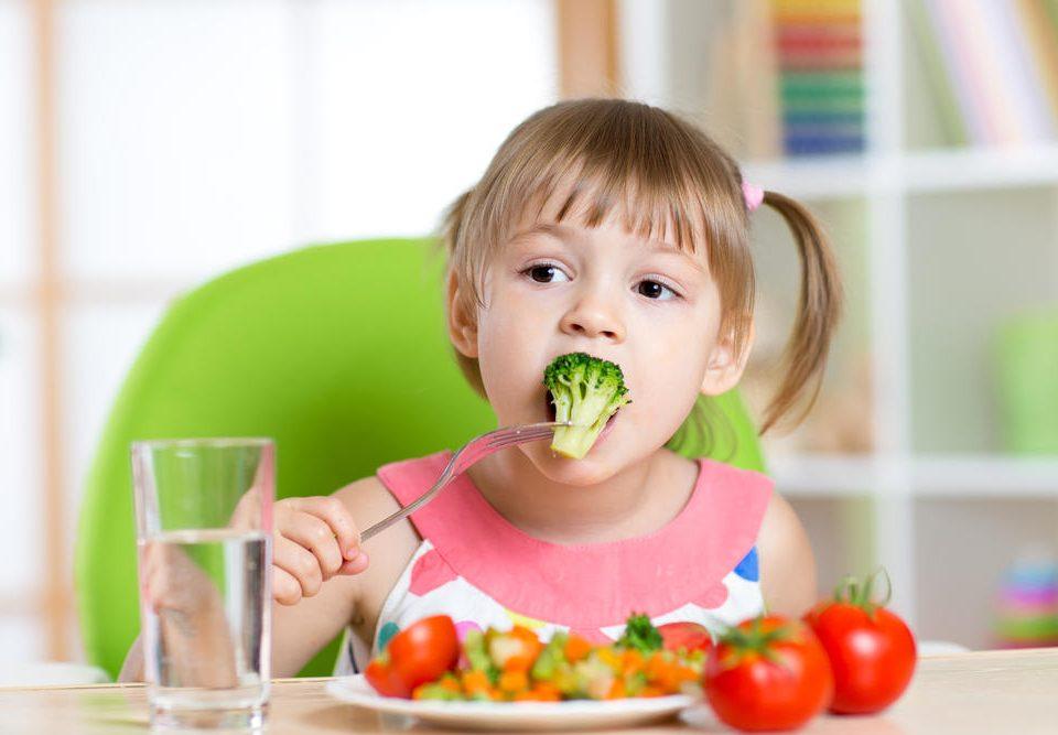Projeto Alimentação Saudável Educação Infantil